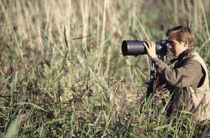 Hvordan bruke en Canon 2X Extender Med en Full Frame 5D